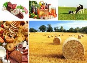 День работников сельского хозяйства и перерабатывающей промышленности агропромышленного комплекса