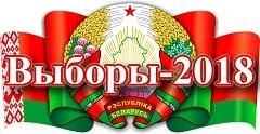 Выборы в местные Советы депутатов