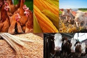 V Международная научно-практическая конференция «Переработка и управление качеством сельскохозяйственной продукции»